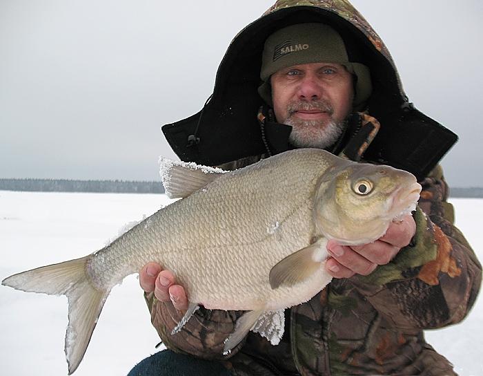 прикормка для зимней рыбалки