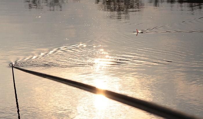 рыбалка с плоским поплавком