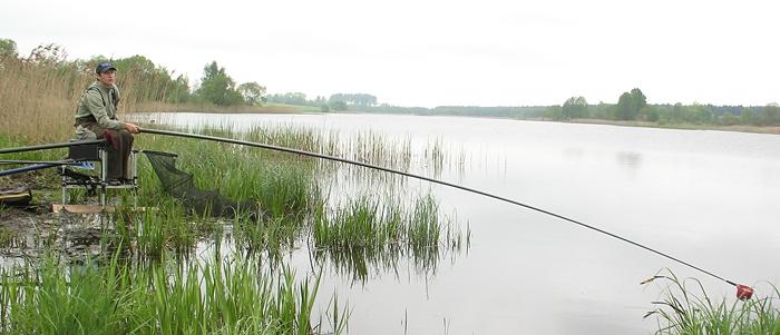 рыбалка с прикормкой