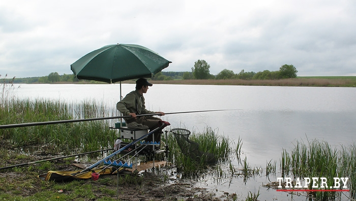 Домашняя прикормка для ловли карася фидер